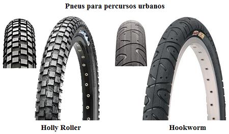 Fig33-holly roller-hookworm-urban-450px